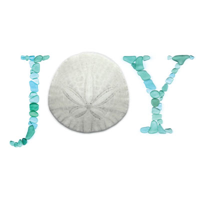 sea glass sand dollar joy