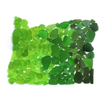Seaglass Oregon map
