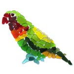 sea glass parrot